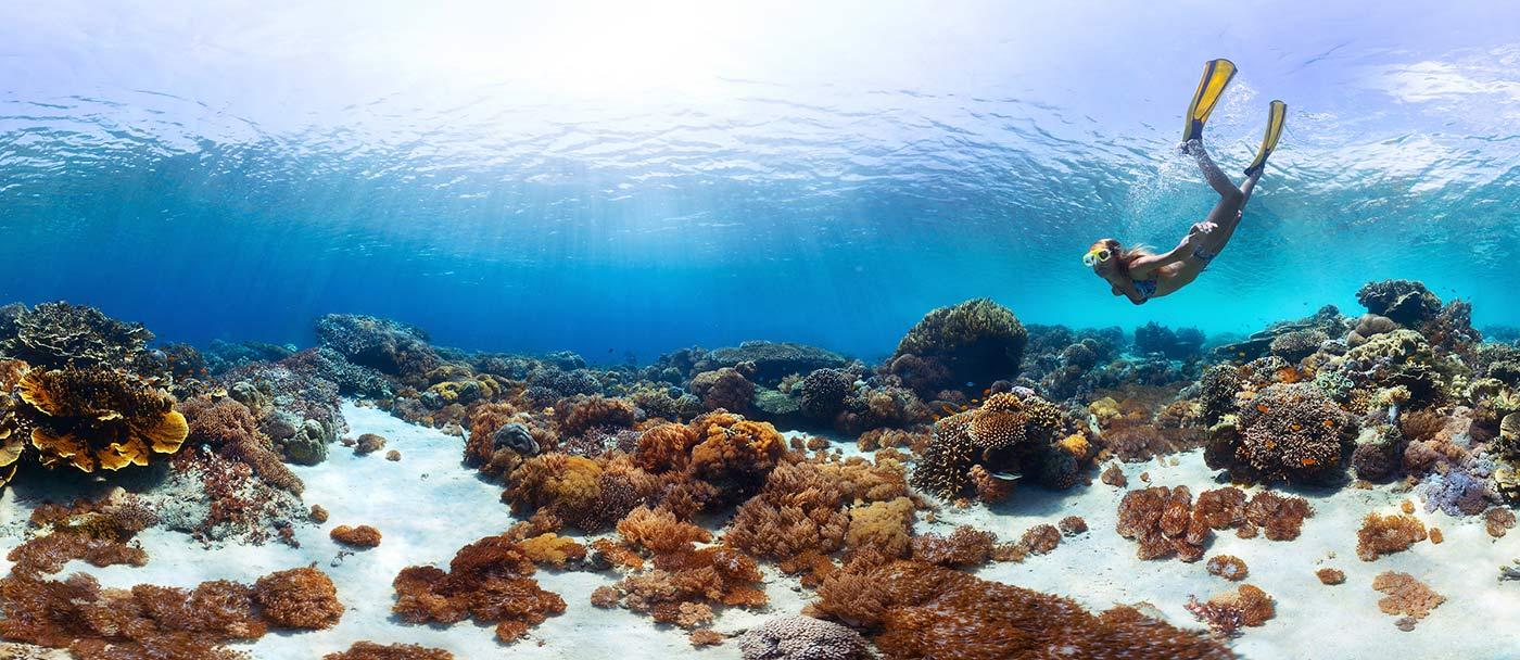 Underwater-panorama-snorkeling